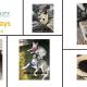 Marketicity Moving Brands Forward Dog Days of Summer